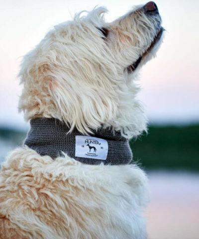 Dog Scarf Nancy