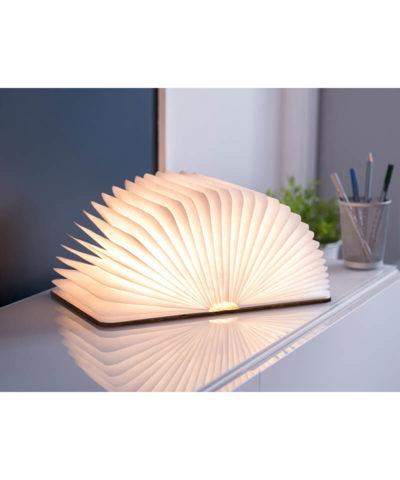 LED Smart Book light Brown