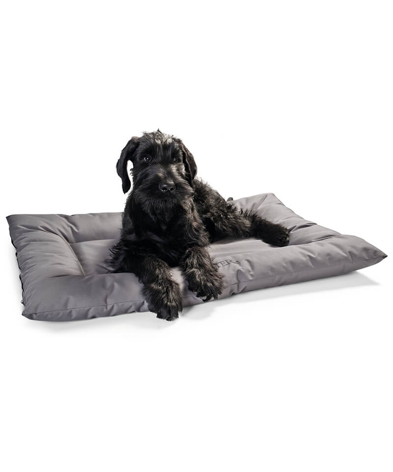 Gent Dog Bed Hunter Dog Beds The Gift Hunter Gifts For Dogs Pets