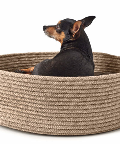 Graz Dog Basket