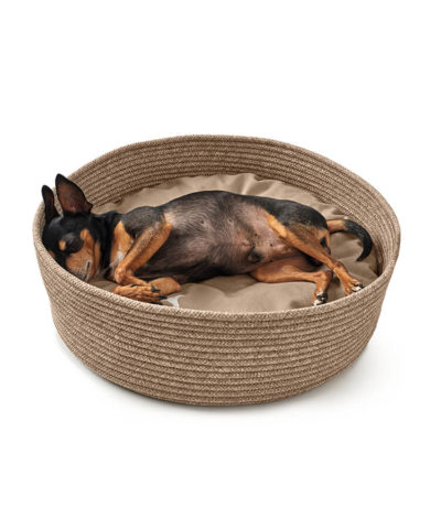Graz Dog Basket