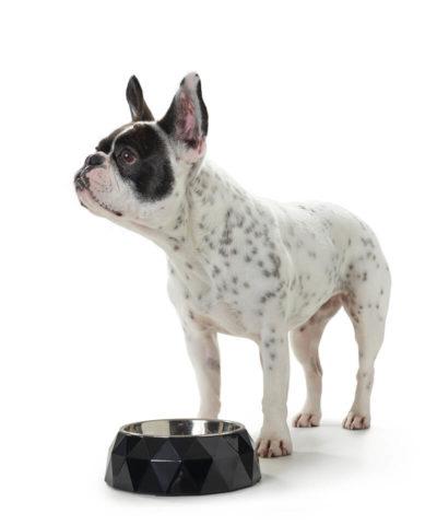 Kimberley Dog Bowl