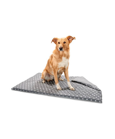 Aarhus Dog Blanket