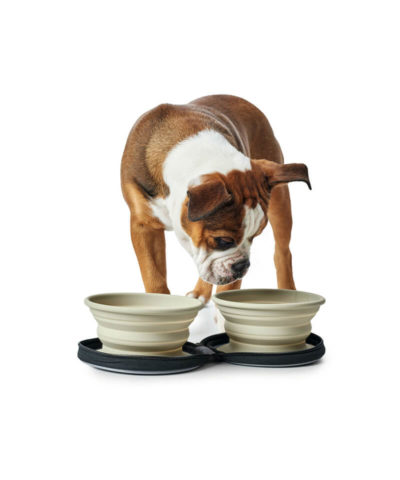 Silicone Travel Dog Bowl with Bag